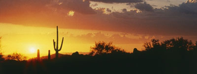 Sonoran_Desert_Sunset.jpg