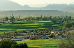 WeKoPa Golf Saguaro Course