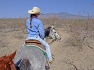 Trailritt auf der Rex Ranch nahe Tubac
